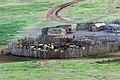 Ngorongoro 2012 05 30 2346 (7500936976).jpg
