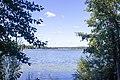 Nizhnee Suzdalskoe Lake - panoramio (2).jpg