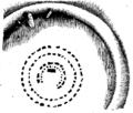 Noções elementares de archeologia fig012.png