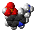 Norbaeocystin zwitterion 3D spacefill.png