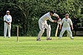 Nuthurst CC v. The Royal Challengers CC at Mannings Heath, West Sussex, England 11.jpg
