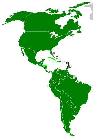 Latin American integration - Image: OAS membership map