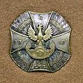 Odznaka 9 pp.jpg
