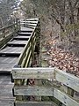 Old and new stairways Starved Rock.jpg