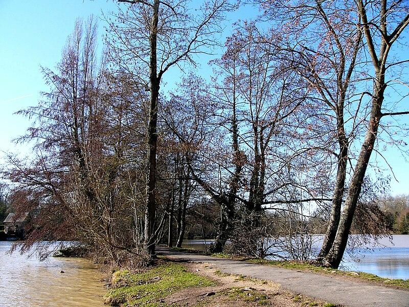 Le sentier des Prés sur le Loiret, Olivet, Loiret, France