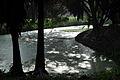One afternoon at Botanical Garden III (8338638744).jpg