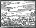 OrbisPictus b 056.jpg