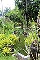 Orchid Garden Bali Indonesia - panoramio (1).jpg