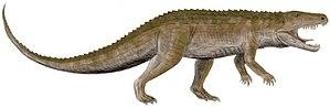 Ornithosuchidae - 80 px