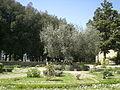 Orto-medievale-perugia.JPG