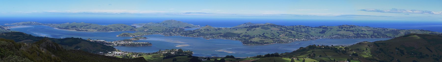 Otago Peninsula from Mount Cargill