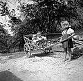 Otroci na kulah, Vino 1948 (2).jpg