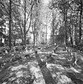 Overzicht begraafplaats - Nieuwkuijk - 20334860 - RCE.jpg