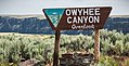 Owyhee Canyon Overlook, Owyhee River Canyon Wilderness Study Area (38760419135).jpg