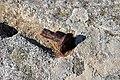 Oxidado - panoramio.jpg