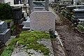 Père-Lachaise - Division 44 - Plante 02.jpg
