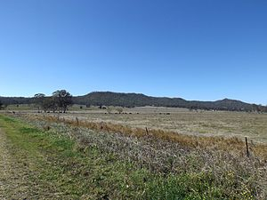 Tabragalba, Queensland - Paddocks along Beaudesert Nerang Road, 2014