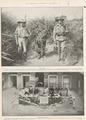 Page 22 of the Queenslander Pictorial supplement to The Queenslander 25 September 1915.tiff