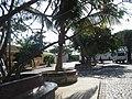 Palmeira - panoramio - brunobarbato (4).jpg