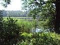Panin rybník 1.JPG