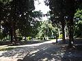 Parco d Scipioni 1270031.JPG