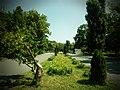 Parcul Herastrau (9463440501).jpg