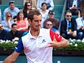 Paris-FR-75-open de tennis-25-5-16-Roland Garros-Richard Gasquet-04.jpg