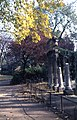 Paris8 ParcMonceau01 JPM.jpg