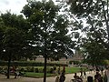 Paris 75001 Jardin des Tuileries Lawns 20150808 (2).jpg