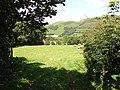 Pasture in Cwm Tafolog - geograph.org.uk - 520731.jpg
