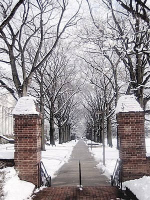 McKeldin Mall - A walkway along the mall in winter.