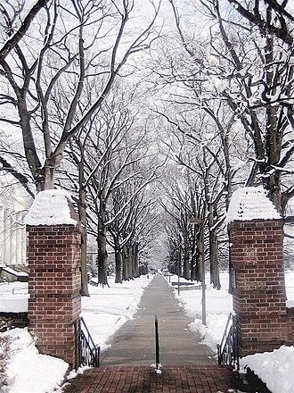 McKeldin Mall - A walkway along the mall in winter.