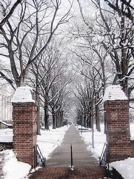 Campus walkway in the winter Path on the left hand side of McKeldin mall in winter.JPG