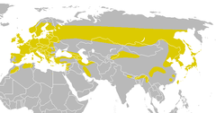 Global range in yellow