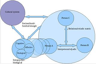Personality systematics