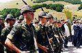 Picchetto del 9° Reggimento Alpini.jpg