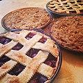 Pies (26222420955).jpg