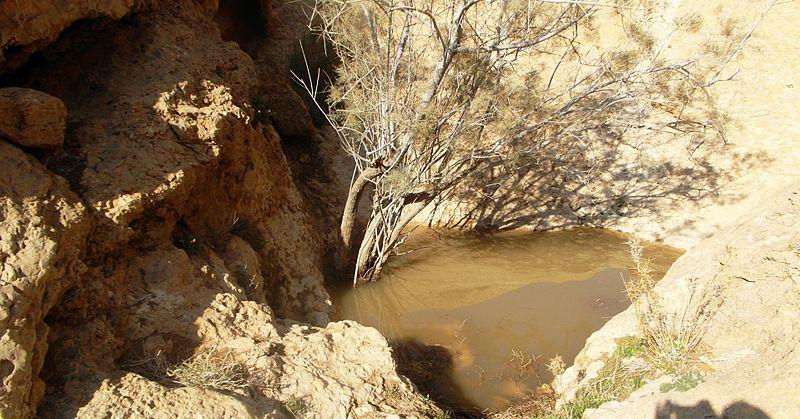 גב מים בנחל מדור