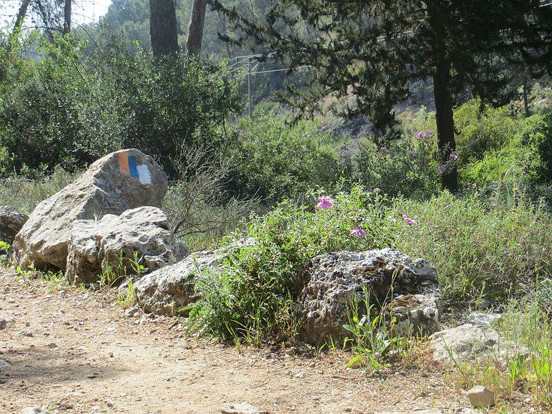 סימון שבילים באשתאול
