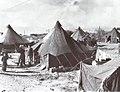 PikiWiki Israel 50973 transit camp.jpg