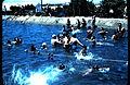 PikiWiki Israel 6075 Bathing pool.JPG