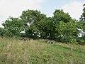 Piknikplaats Gelmen - panoramio.jpg