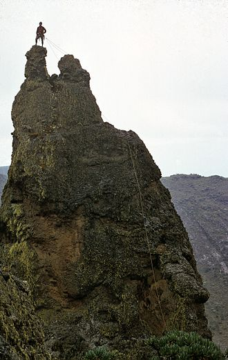 Mount Elgon - A climber on a Sudek Pinnacle