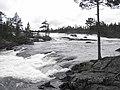 Piteälven - panoramio.jpg