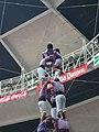 Plaça de Braus de Tarragona - Concurs 2012 P1410229.jpg