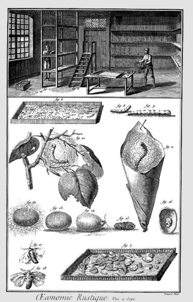 A picture from the Encyclopedia of Diderot and d'Alembert
