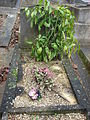 Plants on grave of Suresnes2.JPG