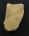 Plaqueta gravada de la cova del Parpalló (Gandia, la Safor), museu de Prehistòria de València.JPG