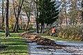 Poertschach Halbinselpromenade Landspitz Laubblaeser 12112015 8897.jpg