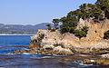 Point Lobos September 2012 009.jpg